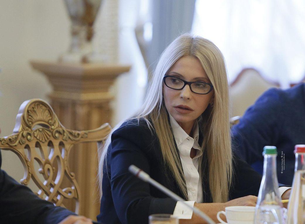 Тимошенко иСаакашвили возглавили поход для свержения властей государства Украины