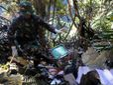 Заключения по авиакатастрофе в Индонезии могут готовить в течение года