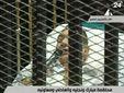 Хосни Мубарака переводят из госпиталя в тюрьму