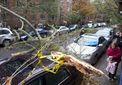 В Нью-Йорке ураган Сэнди уменьшил преступность на треть