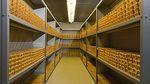 Золотовалютные резервы Украины упали до 11-летнего минимума