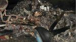 У катастрофі Ан-2 на Волині загинули дві людини