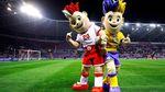 Україна досі фінансує організацію Євро-2012 (Документ)
