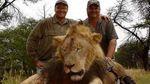 Стоматолог из США коварно убил льва из заповедника Зимбабве
