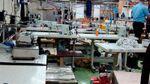 В Одесі викрили шахраїв, які масово підробляли брендовий одяг