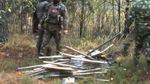 Близько тисячі правоохоронців провели операцію у лісах Волині