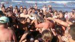 В Аргентине дельфина убили селфи
