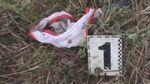 В полиции рассказали, как убивали малолетнюю девочку в Одесской области