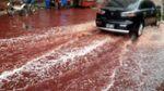 Улицы в Бангладеш залило кровью