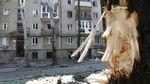 """Рашистські """"мавпи з гранатами"""": Жебрівський розповів про причини вибуху у Макіївці"""