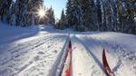 """""""Спасибо за неубранные дороги"""": люди ездят по Киеву на лыжах и сноубордах"""