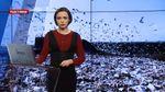 Підсумковий випуск новин за 21:00: Проблеми львівського сміття. Реформа шкільної освіти