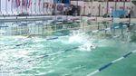 Українські плавці встановили незвичний рекорд