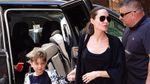 Анджеліна Джолі змінює життя: як виглядатиме новий особняк акторки