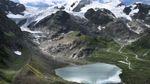 Як на місці льодовиків зеленіє трава: глобальне потепління у фото та відео