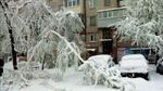 Негода лютує: ще один обласний центр закриває школи через снігопади