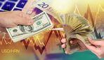 Курс валют на 20 квітня: долар падає, а євро росте