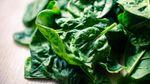 Дієтолог розповіла, як шпинат продовжує молодість