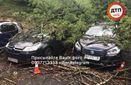 В Киеве бушевала непогода: фото последствий стихии