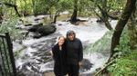 Подружжя за 26 років повністю відновило тропічний ліс: вражаючі фото і відео