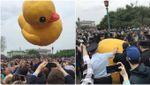 Он вам не Димон: в России официально признали желтую утку средством агитации