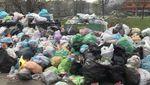 Львовский  мусор снова блокируют: еще один город отказался помочь, несмотря на меморандум