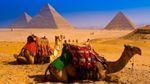 Українців закликають уникати подорожей до Єгипту та Індії