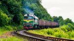 Вантажний потяг збив насмерть людину на Львівщині