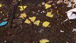 Вблизи Житомира нашли незаконный скотомогильник