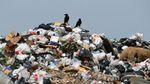 Украинские села страдают от мусора