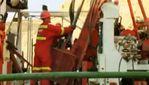 Американская компания планирует вложить 100 миллионов долларов в добычу золота на Закарпатье