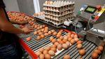 Отравленные яйца: увеличился перечень стран, куда завезли зараженный продукт