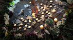 В США полицейский вертолет разбился в городе, где проходят демонстрации: есть погибшие