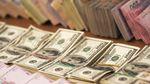 Готівковий курс валют 14 серпня: євро оговтався і знову росте