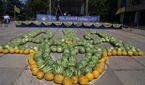 Солодкий і смугастий: на Херсонщині створили гігантський тризуб з кавунів