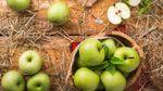 3 осінні продукти, які легко допоможуть схуднути