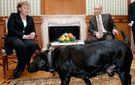 """Авторитетне німецьке видання прокоментувало конфуз з Путіним-""""собакою"""""""