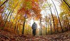 Прогноз погоди на 17 вересня: вереснева спека до +30 охопить Україну