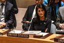 Постоянная представительница США выступила с грозным заявлением в отношении Северной Кореи