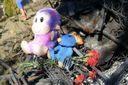 Трагедия в детском лагере в Одессе: в этом есть виноватые и они заплатят