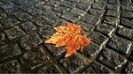 Прогноз погоди на 3 жовтня: холодний фронт із дощами суне в Україну