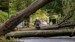 """Смертельний ураган """"Ксав'єр"""" у Німеччині: є перші жертви"""