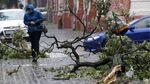 У 16 областях України оголосили штормове попередження