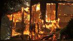 Каліфорнію охопили масштабні пожежі: з'явились жахаючі фото, відео