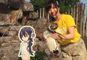 """Журбинка дня: у Японії помер """"закоханий"""" у вигадану дівчинку пінгвін"""