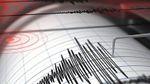 Южное побережье Мексики всколыхнуло землетрясение