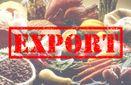 В Інституті аграрної економіки розповіли, на скільки зріс експорт агропродукції з України