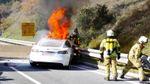 В Австрії загорівся електрокар Tesla: з'явилось відео