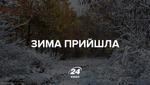 Перший сніг випав у ще трьох областях України: з'явились фото і відео