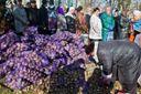 """Для чого терористи вирішили створити штучний голодомор у """"ДНР"""""""